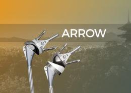 Arrow Japon